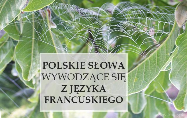 polskie słowa wywodzące się z języka francuskiego - frangowy quiz językowy