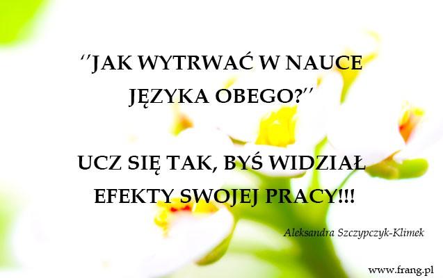 FRANG.pl-Jak-wytrwac-w-nauce-jezyka-obcego-zlota-mysl