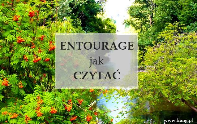 Entourage - jak wymawiać, pisać i używać?